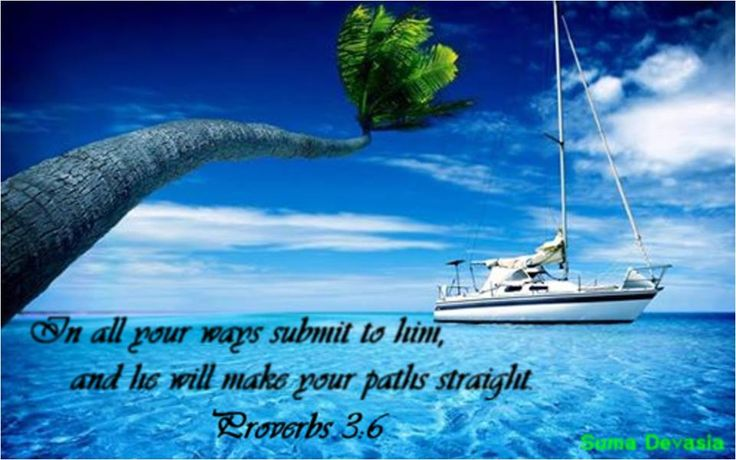 PROVERBS  3:6  In all your ways submit to God and he will make your paths straight.