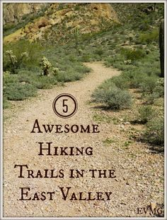 Five Awesome Hiking Trails in the East Valley - East Valley Mom Guide