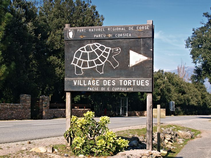 File:Moltifao-Village des Tortues.jpg