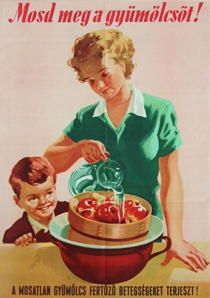 Wash Fruit! Unwashed Fruit Spreads Infections! (Fejes, Gyula - 1950s)
