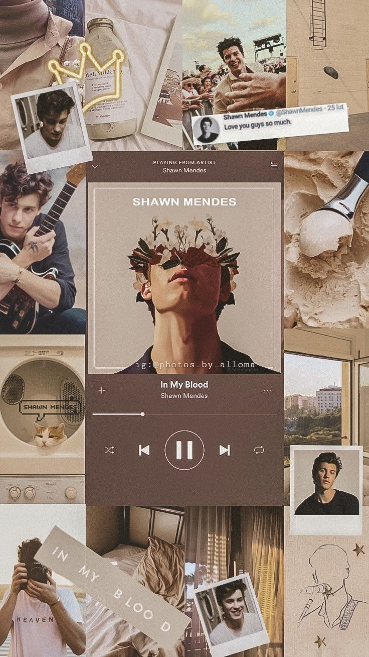 Shawn Mendes Wallpaper Aesthetic Pastel Shawn Mendes Wallpaper