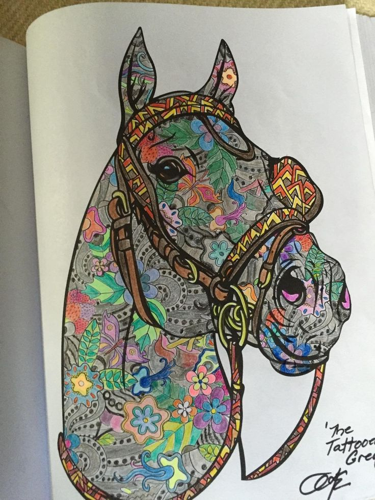 Amazon Horse Coloring Book For Adults An Adult Of 40