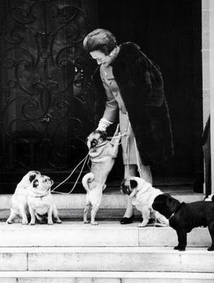 The Duke and Duchess of Windsor were Pug people.