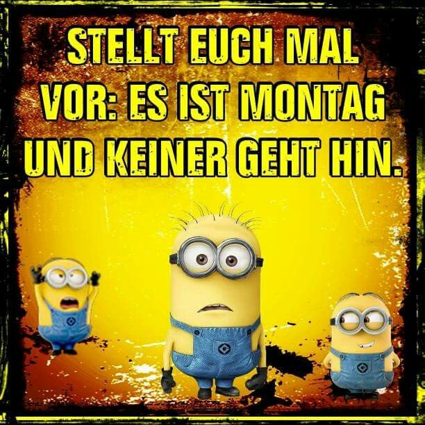 9 best montagsbilder images on pinterest funny pics funny sayings find this pin and more on montagsbilder by schipperpetra79 altavistaventures Choice Image