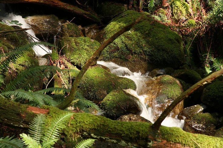 7 Hikes You Can Get To by TransitBy Vancouver Is AwesomeThe beauty of hiking in and around Vancouver is that many of the trails (ranging from easy to difficult)are accessible through public t...