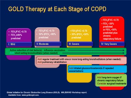 gold therapy at each stage of copd | pa-s | pinterest | therapy, Skeleton