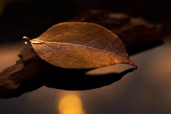 Traumhaft schöne Herbst Blätter Kette Halskette Halsschmuck in Gold/Bronze