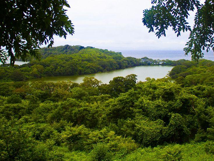 Laguna Charco Verdes,isla Ometepe,Nicaragua.