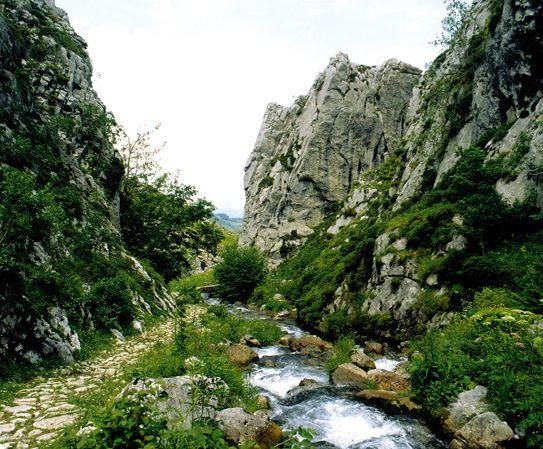 Ruta de las Foces del Río Pino y Río Aller