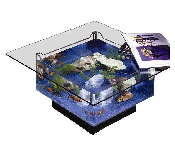 Les 25 meilleures idées de la catégorie Table aquarium sur ...