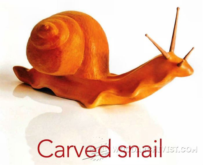 Carving Snail - Wood Carving Patterns and Techniques | WoodArchivist.com