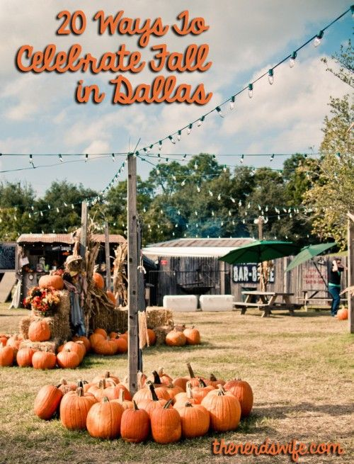 20 Ways To Celebrate Fall in Dallas: Nerd Wife, Dallas Texas, Dallas Pumpkin, Celebrity Fall, Things To In Texas, Fall Autumn, Fun Ideas, Families Fun, Pumpkin Patches