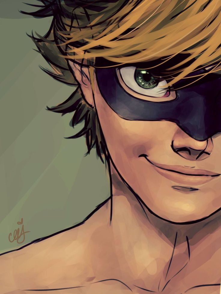487 best images about ladybug and chat noir on pinterest - Manga femme chat ...