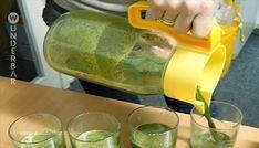 Onkologe entdeckt Saft, der Krebs in 48 Stunden zerstört!... Zutaten:  3 Tassen Löwenzahnblätter 2 Bio-Stangensellerie 1 Bio Zitrone 2 Bio Äpfel (grün) 1 Bio-Gurke