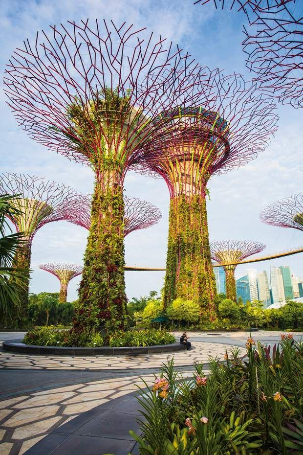 6d4c90cd05ffae8f582e7940c28cc65b - How Long To See Gardens By The Bay