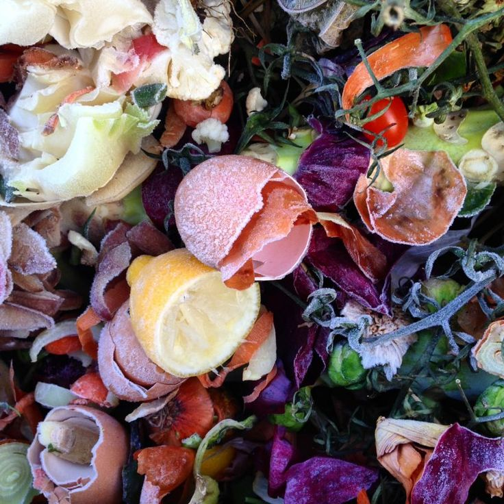 How to stop worrying and love your easy home-made compost