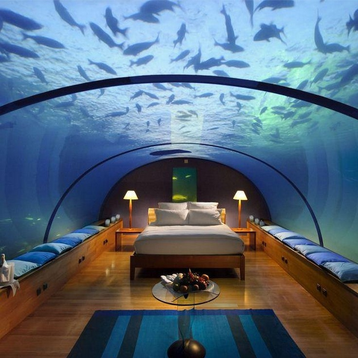 Underwater Bedroom @ Conrad Maldives Rangali Island Hotel-this would be an  awesome place to sleep!