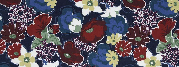 Splashy Garden Poppy | ROBERT ALLEN
