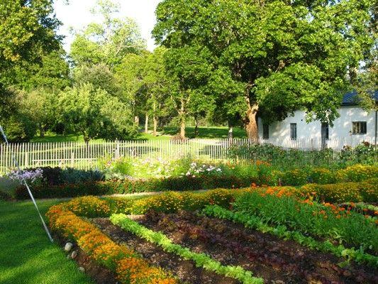 Wij Trädgårdar | Köksträdgården, odling, Wij Trädgårdar
