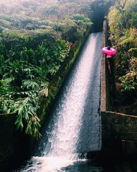 Who's up for a ride! This jungle waterslide in Hawaii is a bucket list item for sure!! #weekendvibes #weekend #hawaii #SummerBucketList