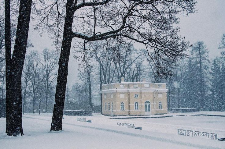 Снегопад. Вид на Верхнюю ванну в Екатерининском парке. ❄️ Snowfall. View of the Upper Bathhouse in the Catherine park. #снегопад #снег #пушистыйснег #зима #зимаблизко #такойноябрь #екатерининскийпарк #верхняяванна #царскоесело #snowfall #snow #fluffysnow #winter #winteriscoming #snowynovember  #catherinepark #tsarskoselo #upperbathhouse #bathhouse