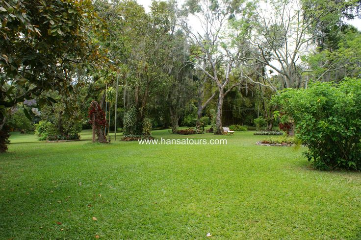 Hacienda Coloma  Guía: Oscar Beltran.
