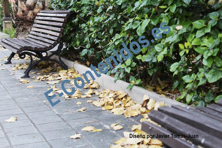 Informa sobre la influencia del otoño en la salud mediante marketing de contenidos.