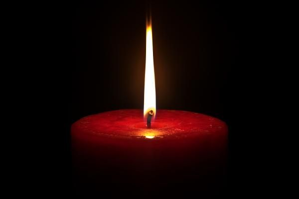 candle | candle international day of peace - DAILY WAFFLE
