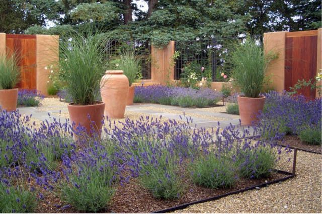 Garden ideas landscaping ideas drought tolerant plants for Full sun perennial grasses