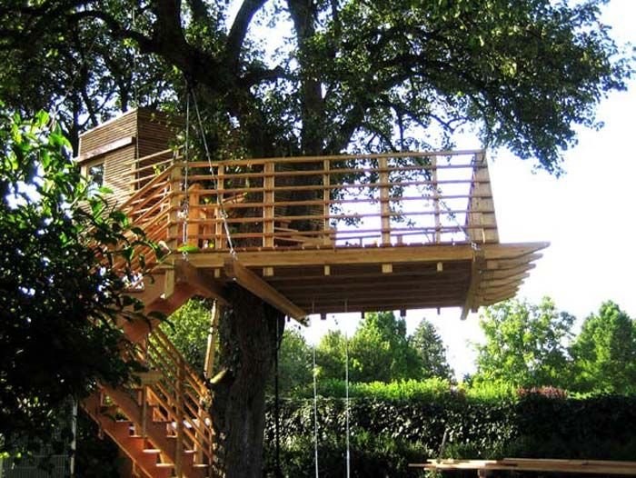 Tree House Plans The Spacious Terrace