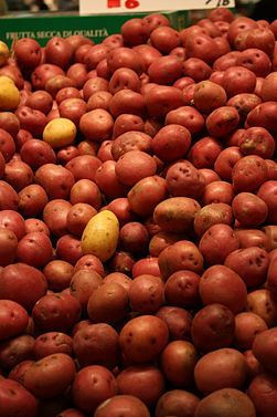How To Properly Store Potatoes...they can last for months