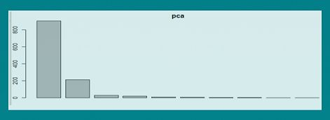 Principal Component Analysis using R