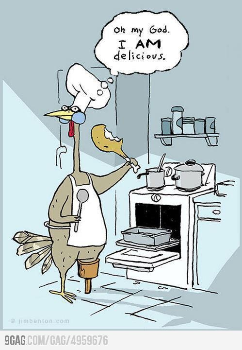This is so wrongThanksgiving Turkey, Thanksgiving Dinner Recipe, Funny Pics, Turkey Dinner, Funny Humor, Funny Pictures, Funny Cartoons, Funny Photos, So Funny