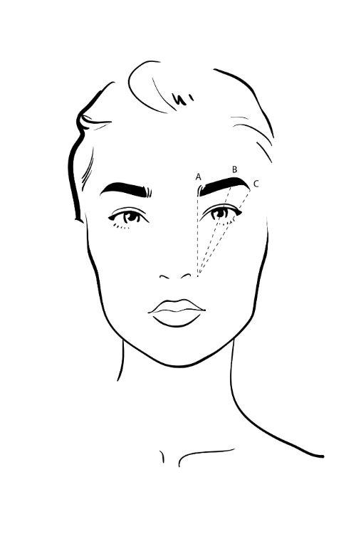 Схема для идеальной формы бровей