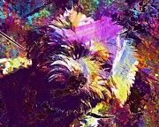 "New artwork for sale! - "" Dog Poodle Shaggy Animals  by PixBreak Art "" - http://ift.tt/2uk3jsm"