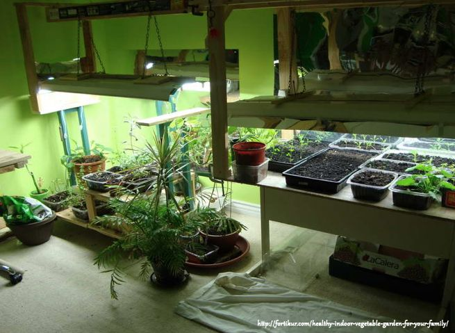 how to select the best grow light for indoor growing?