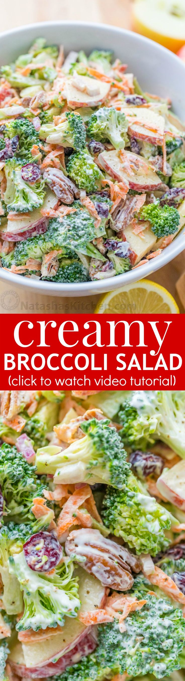 The ORIGINAL Broccoli Salad Recipe - loaded with broccoli, apples, craisins and pecans, and tossed in a creamy lemon dressing. A must-try broccoli salad! | natashaskitchen.com