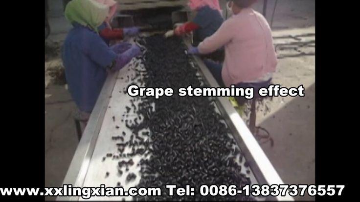 Grape Destemmer Equipment, Grape Stem Removal Machine, Grape Stem Removi...