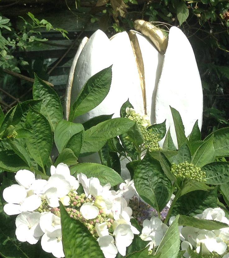 Tulip, sculpture garden