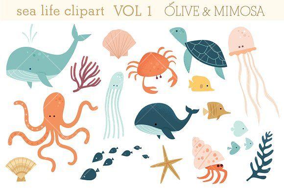 Sea Life Set Vol 1 In 2020 Sea Animals Drawings Ocean Illustration Sea Life