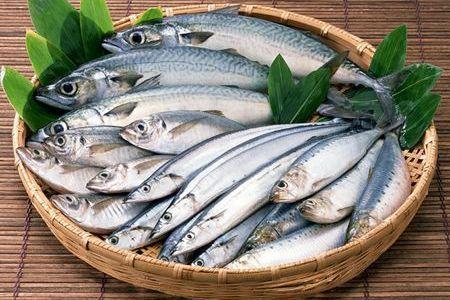 青い魚と呼ばれる魚には、秋刀魚やイワシ、サバ、アジなどがありますが、その多くの旬は秋。脂がのって美味しい時期の青い魚にはDHAやEPAの不飽和脂肪酸が沢山含まれ、アルツハイマー型痴呆や老人性の痴呆症の予防、心筋梗塞や虚血性心疾患、動脈硬化、脳梗塞、脳卒中などの予防や改善に効果があります。#健康#Food#料理#レシピ#Recipe