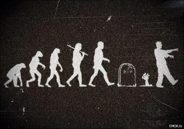 Zombie Evolution: Zombies Apocalyp,  Welcome Mats, Awesome Shirts, Walks Dead, Circles Of Life, Funny Pictures, Zombievolut, Zombies Evolution, Monkey