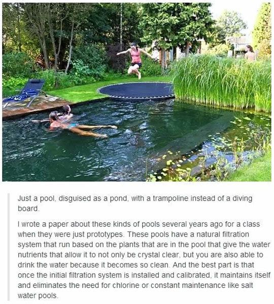 I like the idea of the trampoline but I would kind of like to be able to see the bottom of the pool, for safety reasons.
