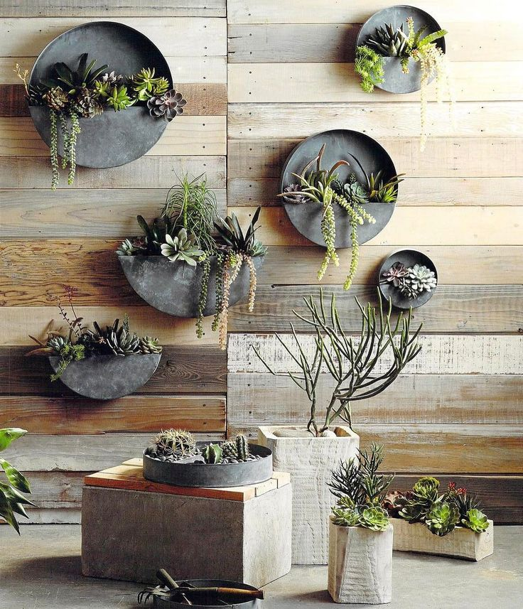 Kind of adore these planters. 👌🏼 A little bit county a little bit rock and roll 😍 Look for less on the blog! http://wp.me/p7r27P-5hO