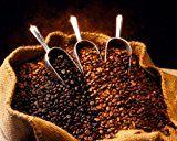 Peru Approcassi Cajamarca Fair Trade Shade Grown Organic Coffee Beans