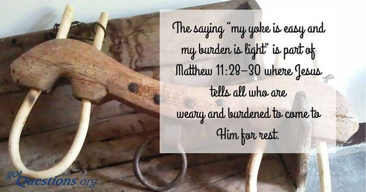 Bible Study: Matthew – Burden & Blessing