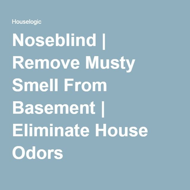 Noseblind | Remove Musty Smell From Basement | Eliminate House Odors