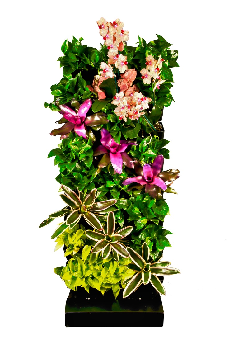Vertical garden design with orchids space saving backyard landscaping - Simply Vertical Planting Systems Portable On A Wall Or A Complete Living Wall System