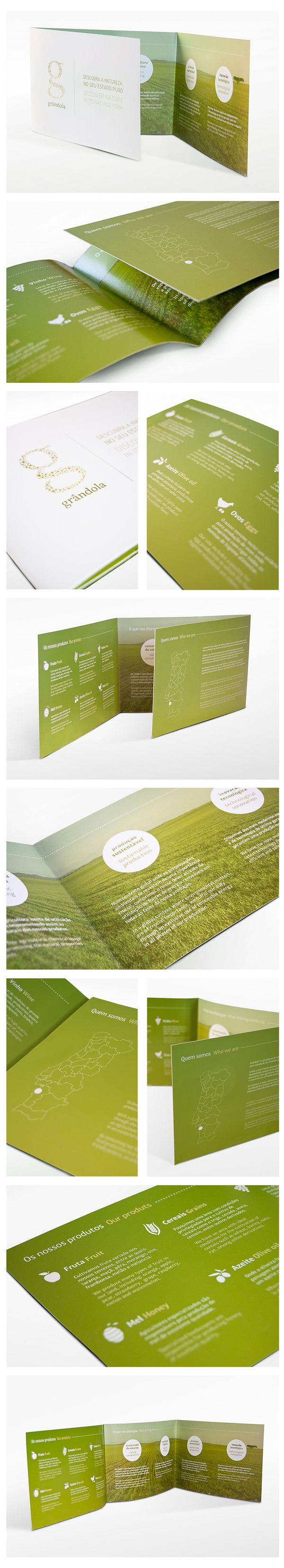 Good inspiration for a health or nutrition branding project. I love the green and organic aesthetic.