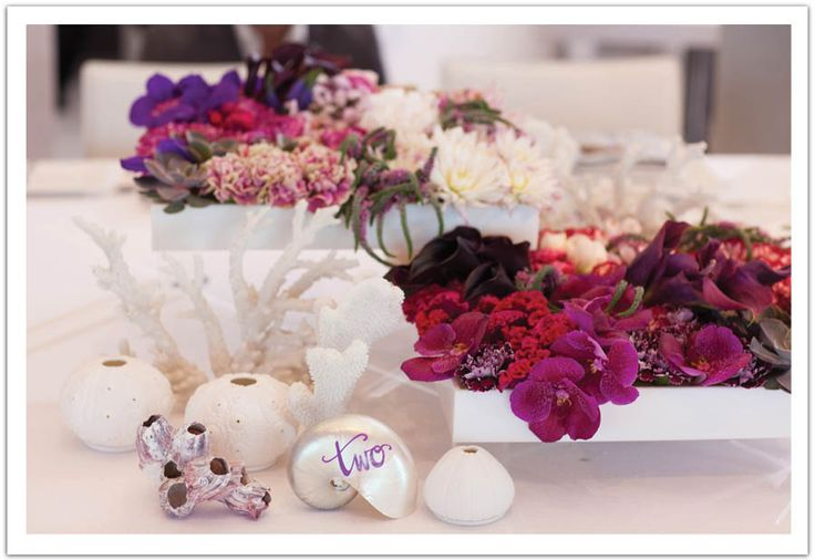 Vibrant centerpieces and seashell table numbers  Modern La Jolla Beach Wedding by Alchemy Fine Events, part 2. www.alchemyfineevents.com